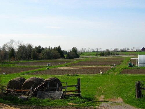 Field: May 7, 2007