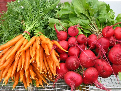 First carrots plus beets