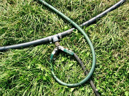 Hose and valve