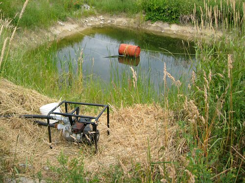 Pond and pump
