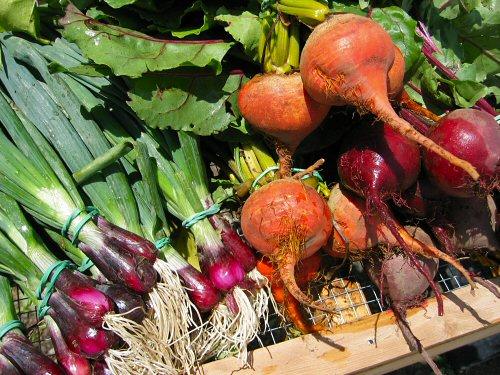 Red onions, golden beets
