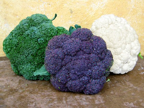 A broccoli, a cauliflower, and...