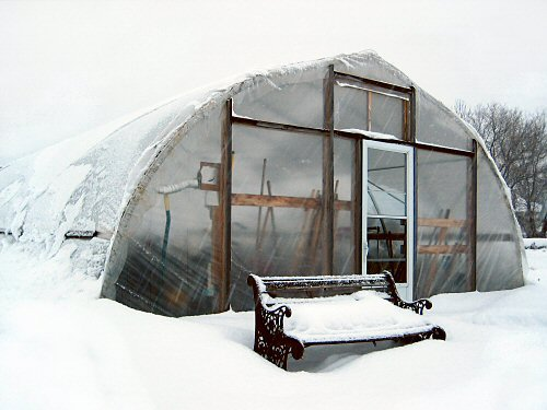 Snow watch: checking the greenhouse