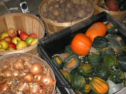 Root cellar crops like squash, potatoes, apples and onions