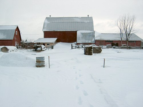 The Barn on Jan 1, 2008