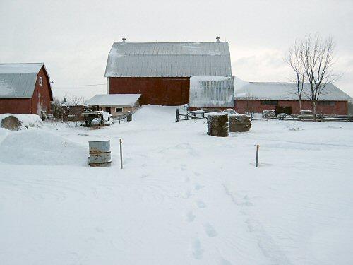 The Barn on Jan 1, 2008