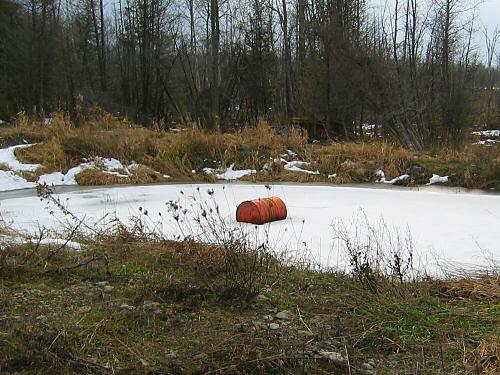 Slightly frozen pond