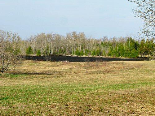 Grass fire across a field