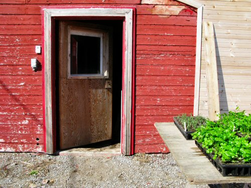 Milkhouse side door