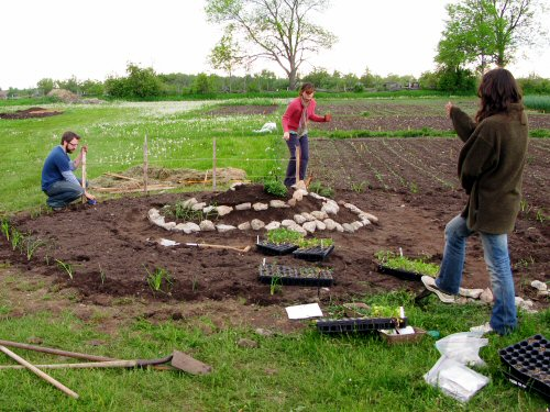 Planting the home garden