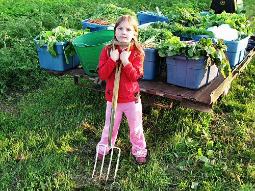 Kid and harvest