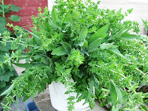 Parsley, sage, oregano