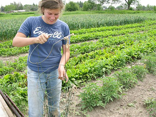 Instant farmer!