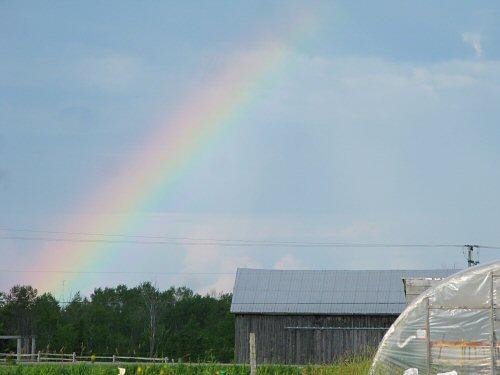 Buckets of rainbows