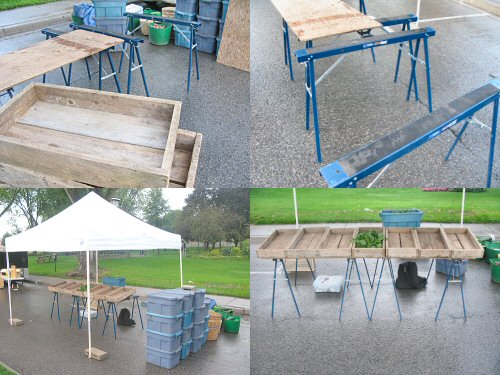 Setting up tables at the farmers' market