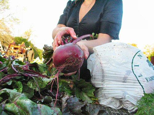Michelle preps beets