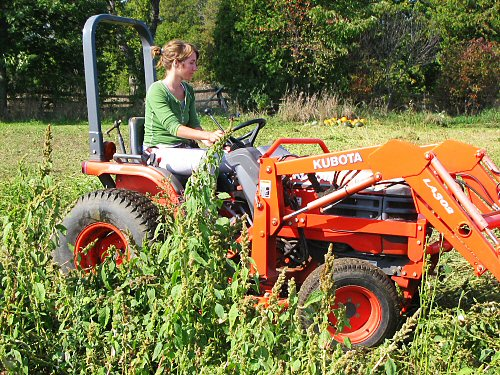 Raechelle and the Kubota compact tractor