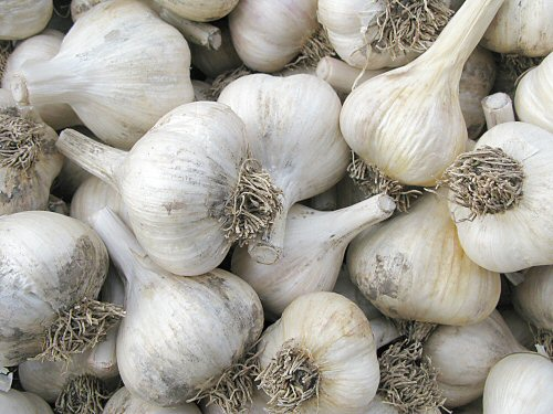 Trimmed garlic