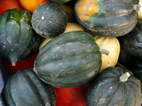 Winter squash season