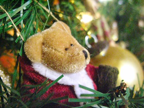 Christmas tree bear ornament