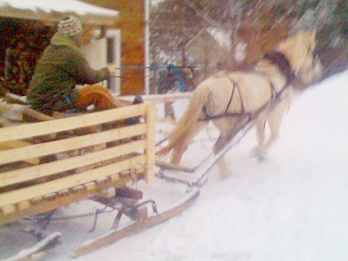 One-horse farming