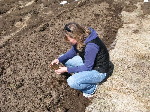 Andrea inspects newly tilled soil
