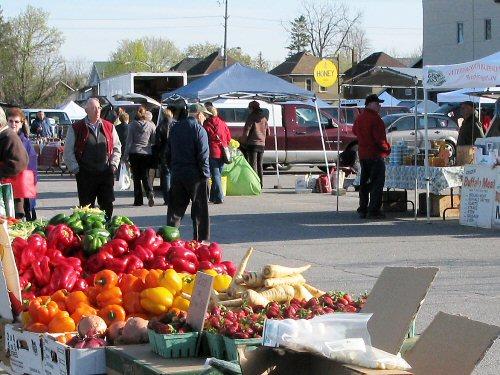 Summer farmers' market: Day 1