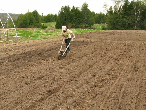 Seeding with the Planet Jr.
