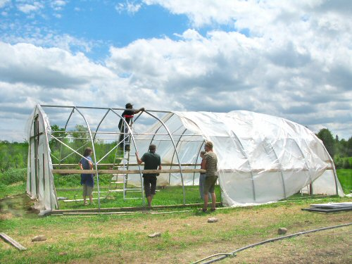 Hoophouse: plastic half on