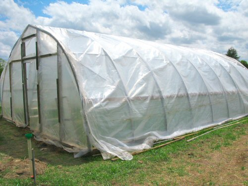 Hoophouse: plastic on