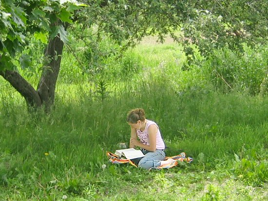 Reading in the shade of a tree