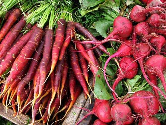 Purple Haze carrots, Chioggia beets