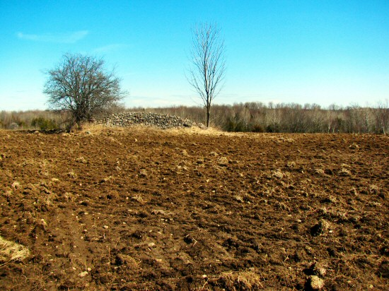 Fall-plowed field in late March