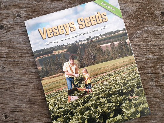 First seed catalog of the year!
