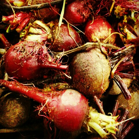 Cleaning up the field: beets
