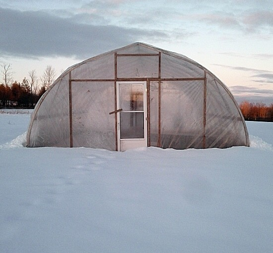 Greenhouse out in the cold