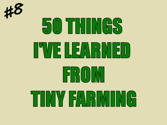 50 Things I've Learned from Tiny Farming: #8 Remain Calm