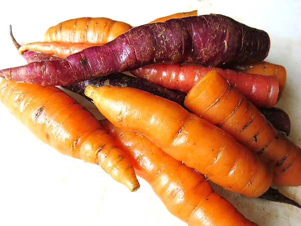 Assorted stored carrots