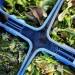 First winter harvest: salad greens