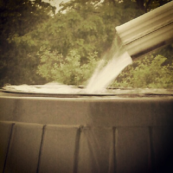 Rain into rain barrel